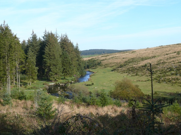The East Dart river from the start of the walk