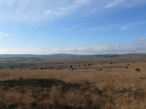 Wide open spaces to North Hessary Tor