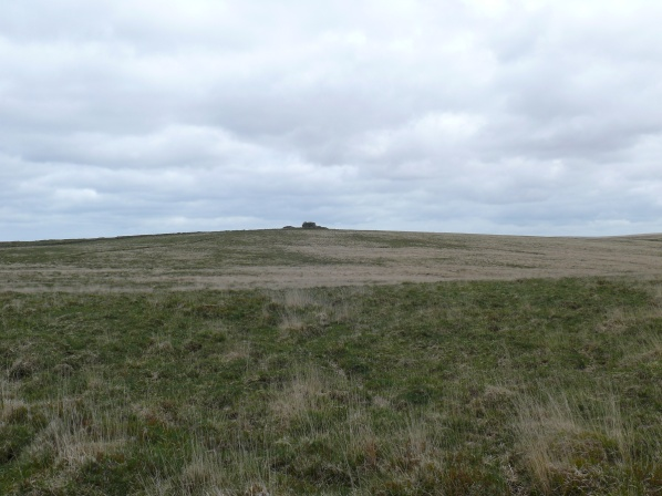 South Hessary Tor across typical Dartmoor terrain