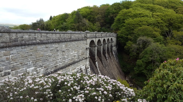 and the Dam