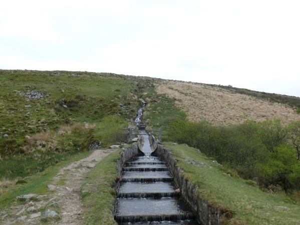 Raddick Hill as the Devonport Leat tumbles down