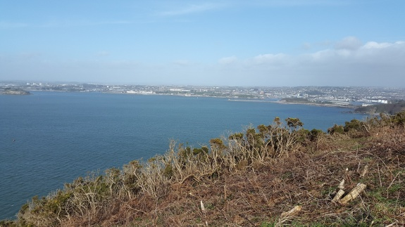 Plymouth from the South West coastal path