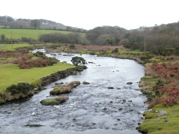 The River Plym from the start at Cadover