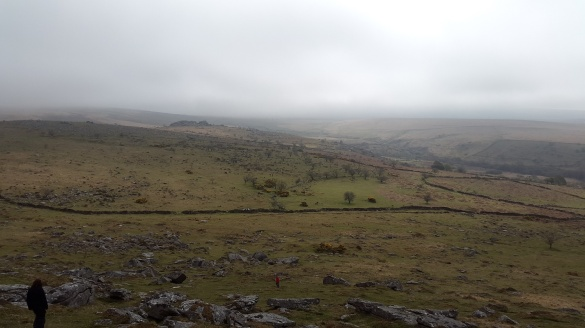 Looking across to Combeshead Tor from Down Tor
