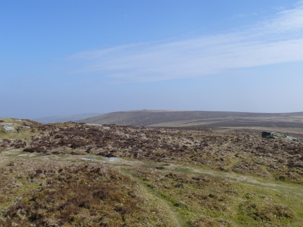 The fairly dull approach to Shapley Tor