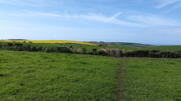 I'll be over in that yellow field later but first rouond to the coast path and Bovisand