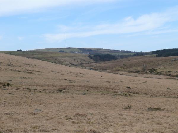 Royal Hill 13