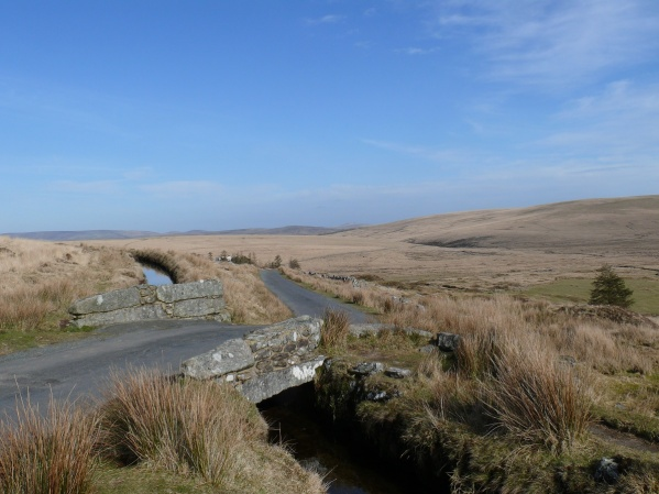 End of the walk beside the Devonport Leat
