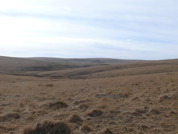 Royal Hill 6