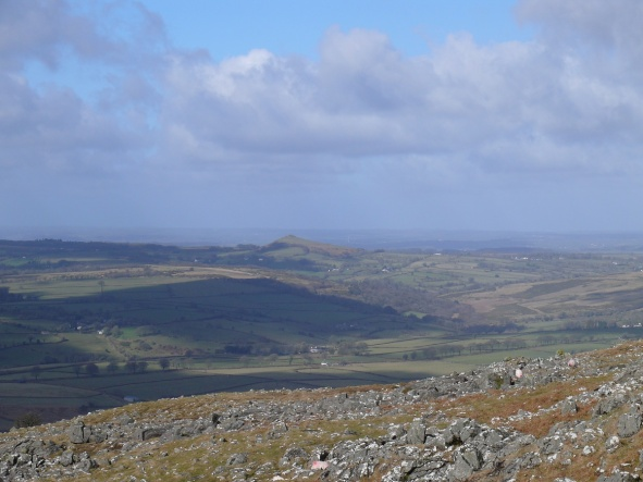 Staple Tors 5