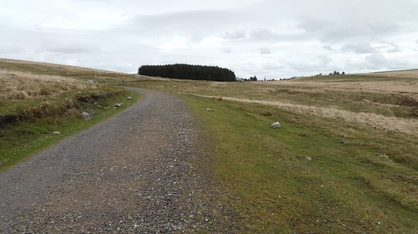 Almost back to Princetown