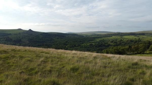 Climbing up Sheeps Tor