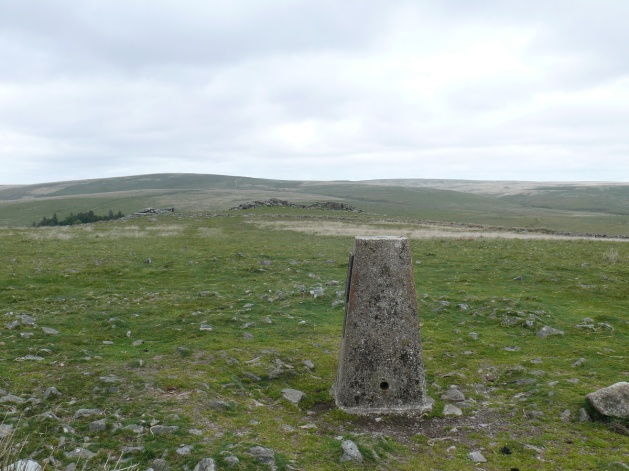 Gutter Tor trig point with the tor behind