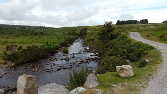 River Plym at the start of the walk