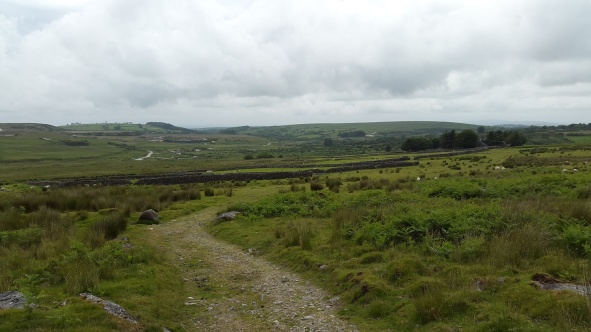 And looking back to the farm