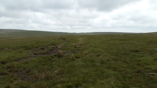 The Lych Way, the bumps in the distance I think are Beardown Tors.