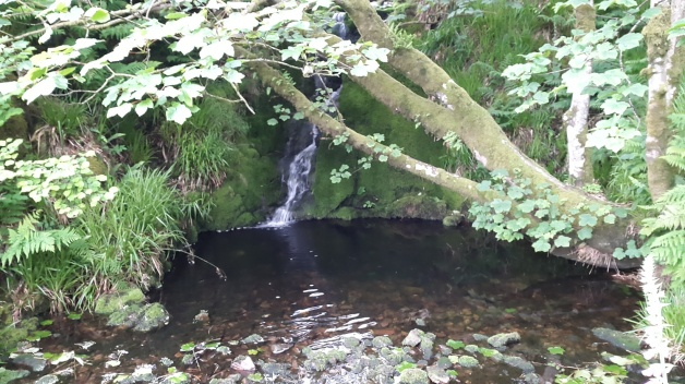 The small waterfall on Shavercombe brook, a good place to camp