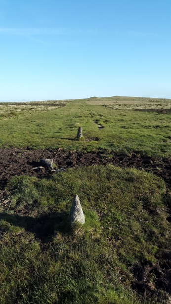 Butterdon Stone Row