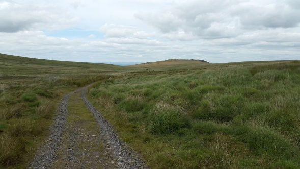 The track from Dinger tor with East Mill Tor ahead
