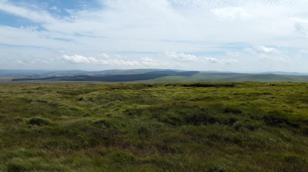 Whitehorse Hill 3