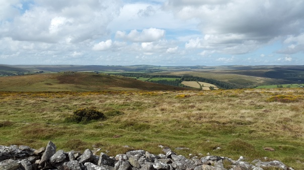 Looking over to Yar Tor and Princetown mast beyond