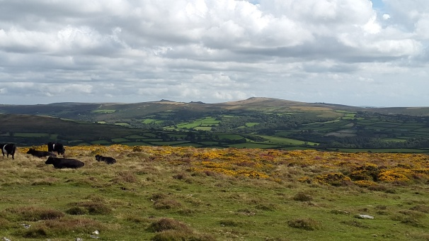 Haytor Rocks can clearly be seen