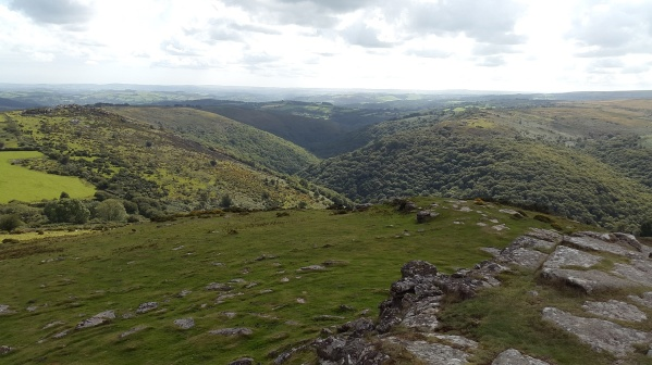 The Dart Valley from Sharp Tor