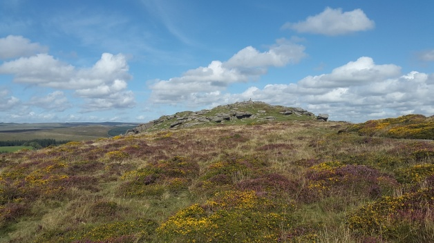 The summit of Yar Tor