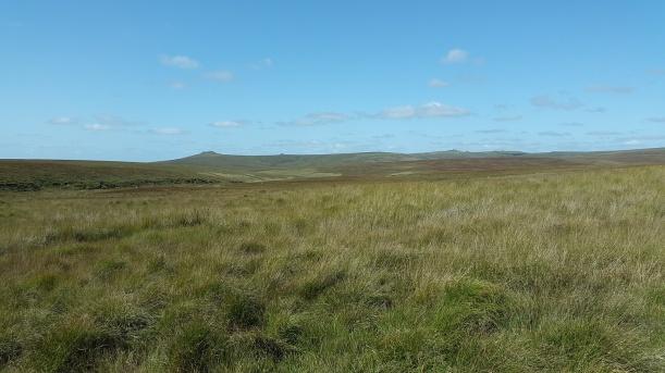 Cut Hill 15