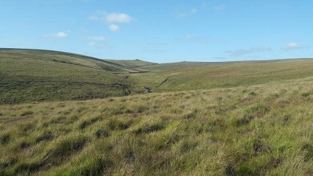Cut Hill 31