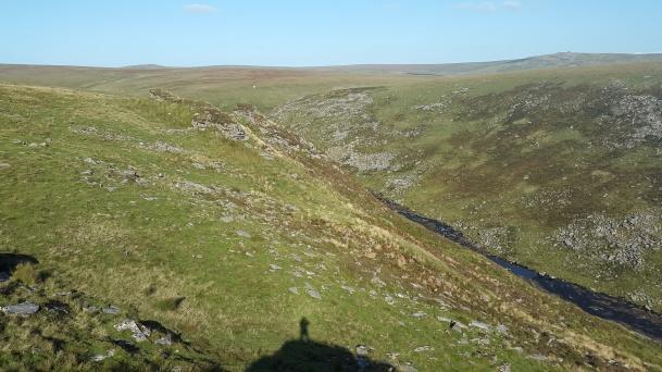 Cut Hill 37