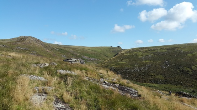 Tavy Cleave from Nat Tor