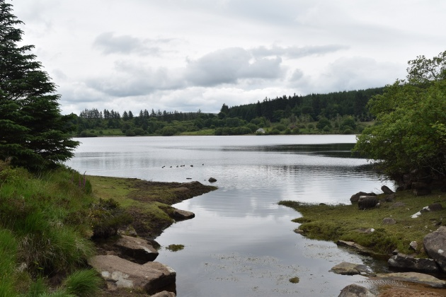Fernworthy Reservoir 4