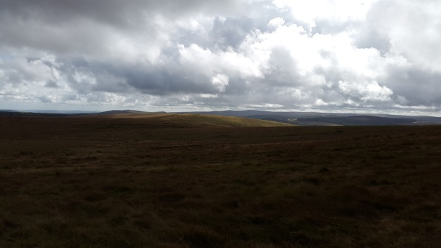 Merripit Hill 4