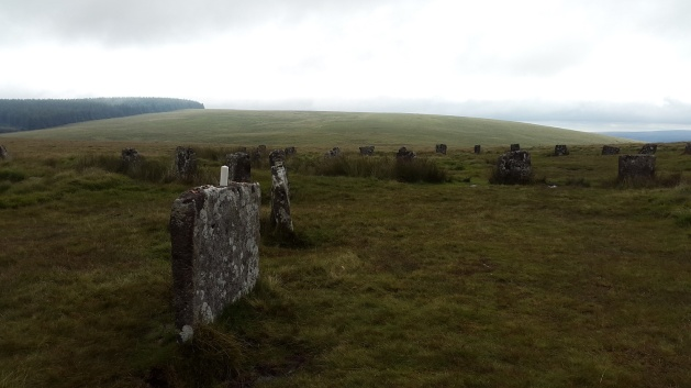 The two stone circles with what looks like an offering area on top of the stone to the left