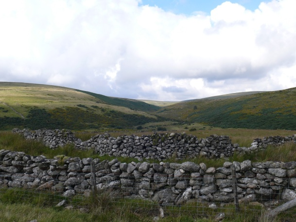 Looking back along the East Dart valley