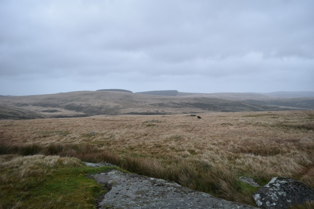 Broadown Tor 1