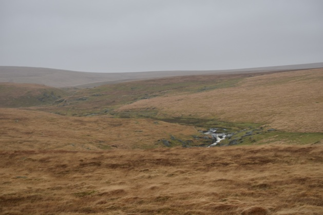 Broadown Tor 3