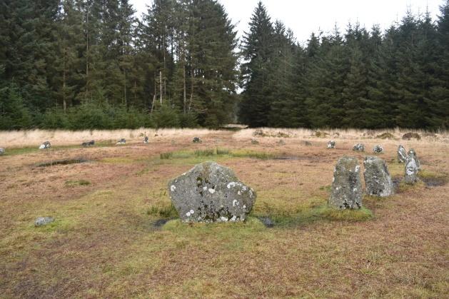 Fernworthy Circle 2