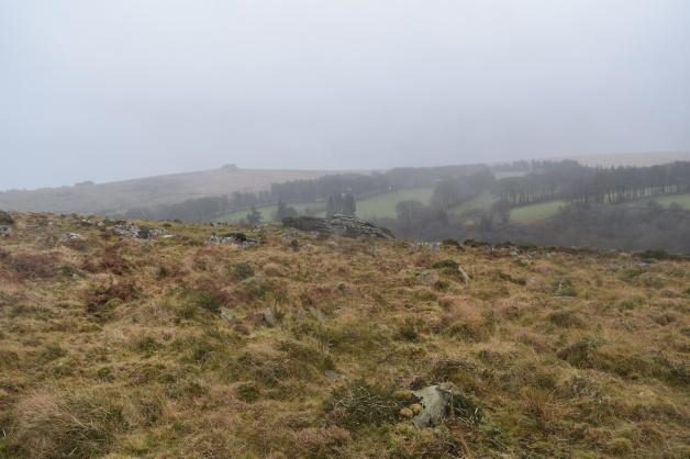 Scorhill Tor 1