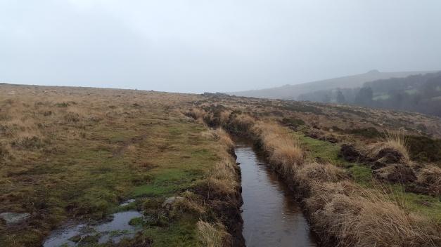 Scorhill Tor 3