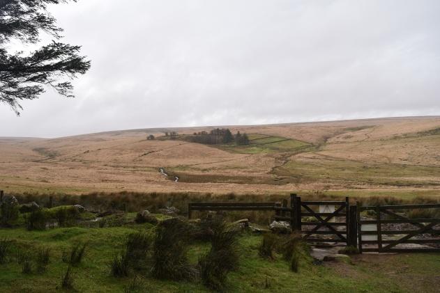 Teignhead Farm 1