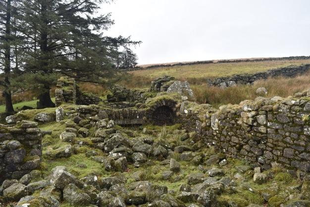Teignhead Farm 3