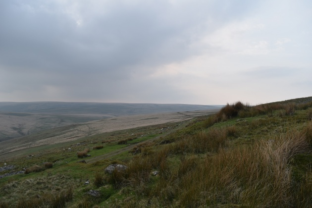 Two Moors Way 1