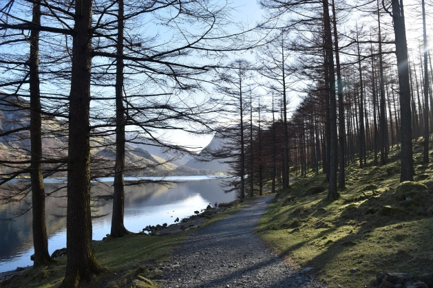 Buttermere 5