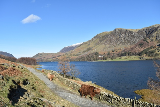 Buttermere 8