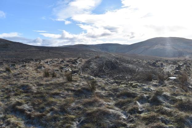 Crag Fell 3