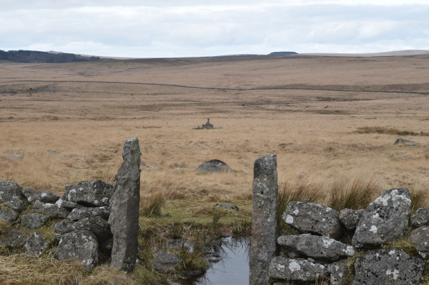 Throiugh the gate to Childe's Tomb. Foxtor Mire beyond