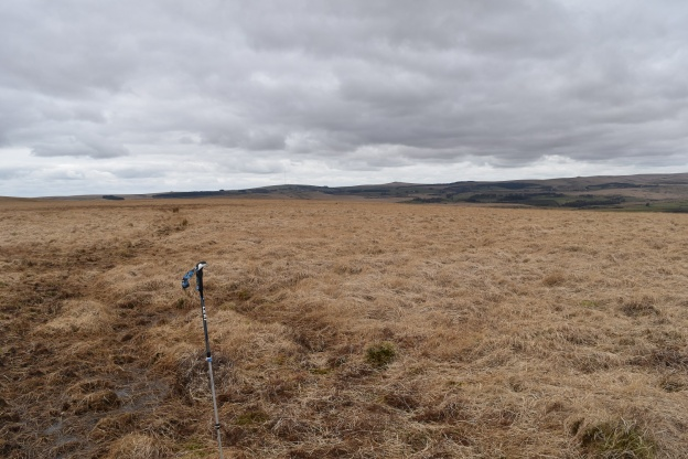 Down Ridge 2