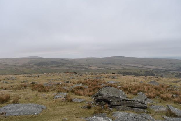Standon Hill 2